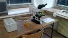 Fluorescenčný mikroskop (Mikmed 2, luminiscent)
